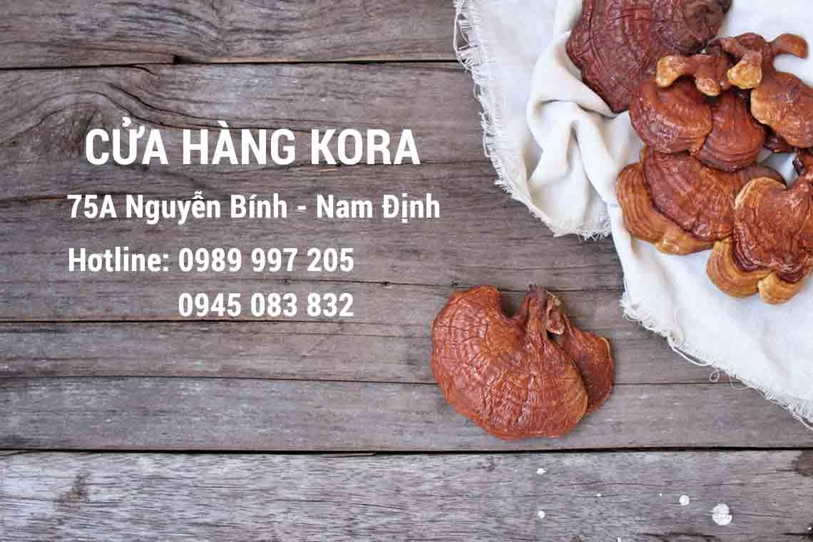 Địa chỉ bán Nấm Linh Chi Hàn Quốc uy tín chất lượng